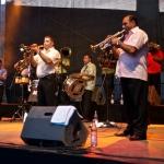 2010-07-30-fanfare-ciocarlia-085